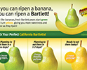 Bartlett ripen POS English