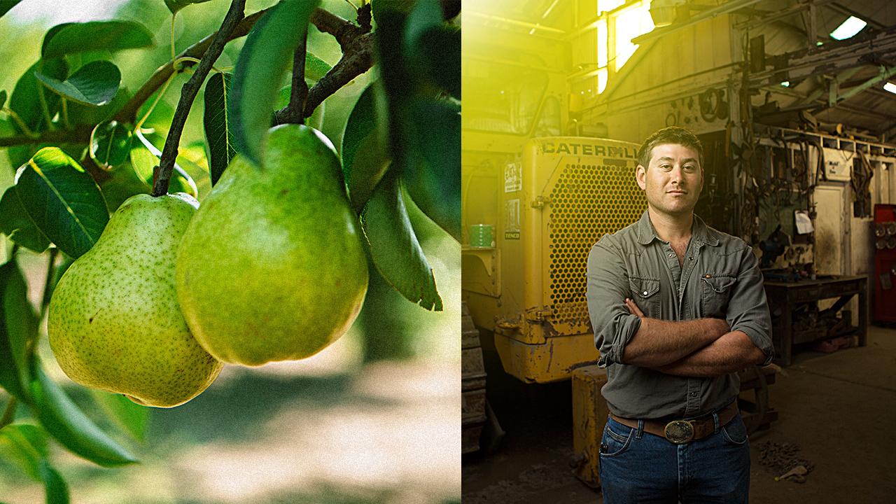 PearsKeyframe