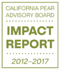 CPAB Impact Report